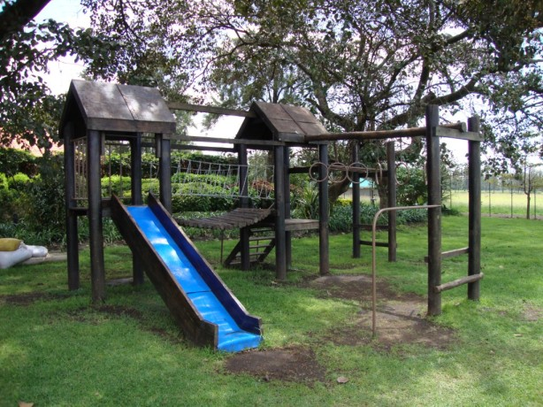 wood jungle gym plans